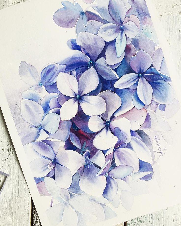 "6,451 Likes, 205 Comments - Julia Barminova  WATERCOLOR (@juliabarminova) on Instagram: ""New one to collection #violetpurplelilac_jb and #lovelywatercolorhydrangea_juliab  Хей! Что-то у…"""