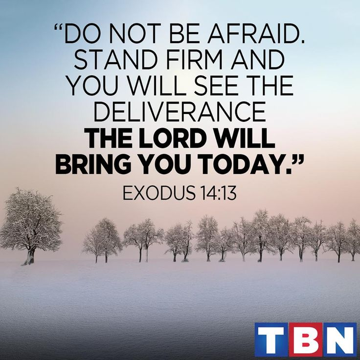 "Exodus 14:13 (NAS) But Moses said to the people, ""Do not fear! Stand by and see the salvation of the Lord which He will accomplish for you today; for the Egyptians whom you have seen today, you will never see them again forever   https://www.facebook.com/TBN/photos/1219559828080544"