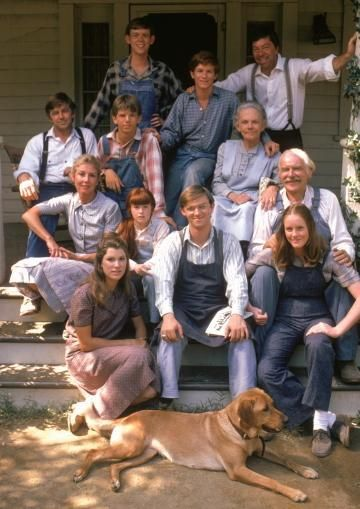 The Walton's My most favorite tv show as a child growing up.  This was just good wholesome entertainment !