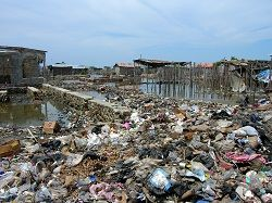 Solid waste spoils our life http://www.pollutionpollution.com/2012/10/solid-waste-spoils-our-life.html