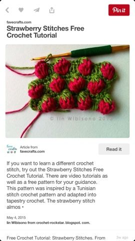 The inspiration came from Bloggang Strawberry tunisian crochet when the blogger posted her pic and pattern diagra...