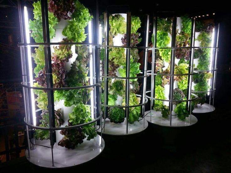 115 besten farms bilder auf pinterest - Der Vertikale Garten Live Screen Danielle Trofe