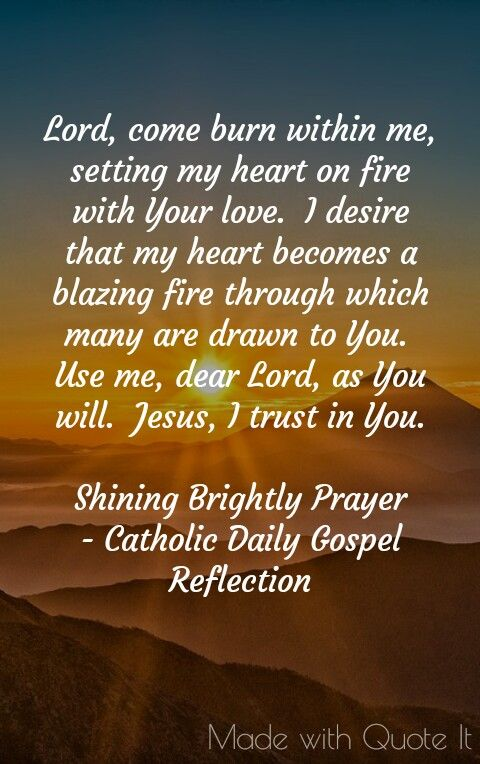Shining Brightly Catholic Daily Gospel Reflection