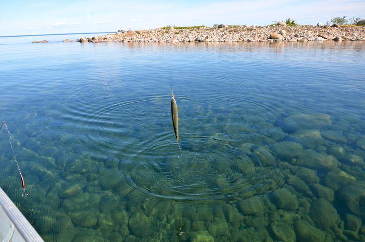 Fishing the Great Bear Lake Deline Northwest Territories ...