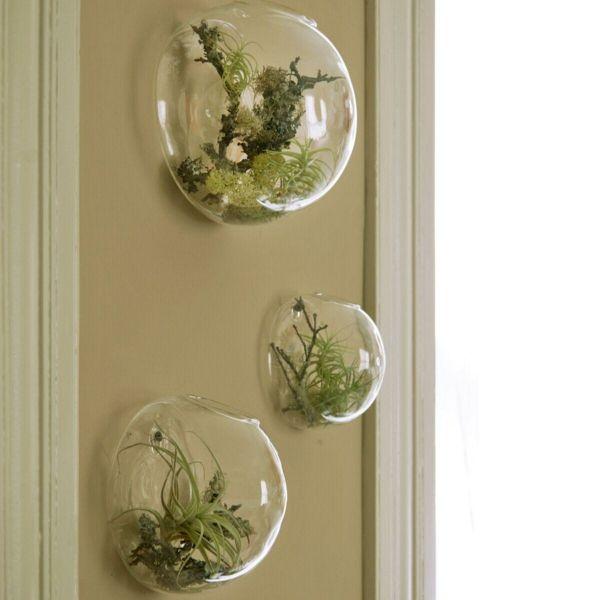 best 20 gr ne zimmerpflanzen ideas on pinterest. Black Bedroom Furniture Sets. Home Design Ideas