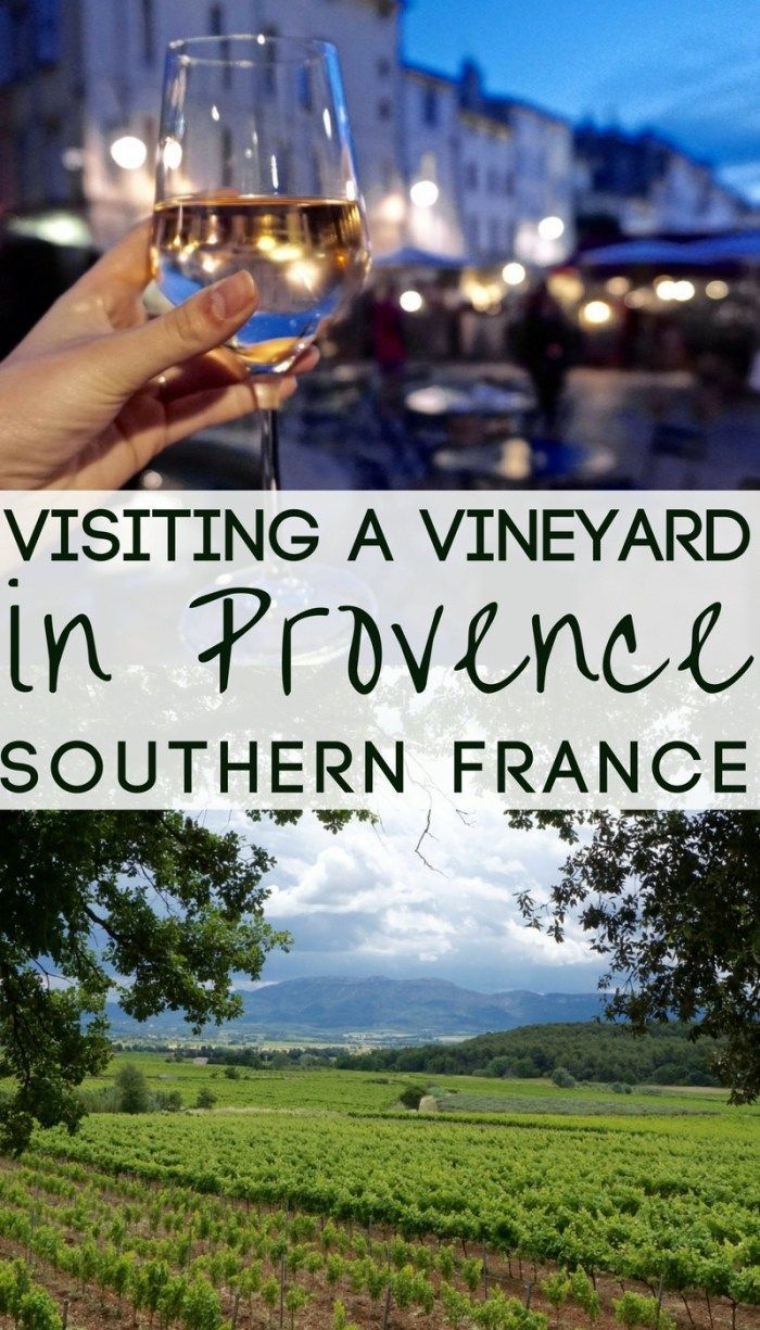 Visiting Les Vignerons du Mont Saint-Victoire- A vineyard and self-guided tour of the vines and the chance to taste some Provençal wine. Provence, France