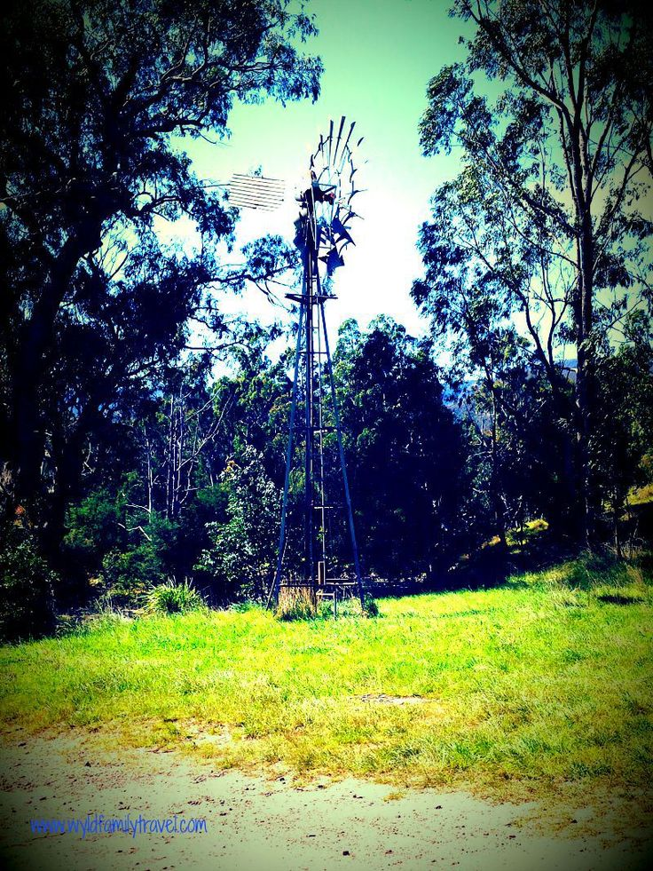 Windmill in Gippsland High Country Licola