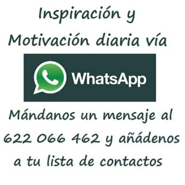 Recibe una chispa de inspiración y/o motivación diaria directamente en tu móvil #PersonalMotivationPack #motivation #motivational #motivationalquotes #inspiration #inspirational #inspirationalquotes www.quirotao.com