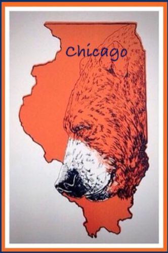"""Chicago is """"DA BEARS"""""""