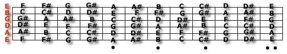 Learning all the notes on your guitar's fretboard is an important early step for the beginning guitarist. Knowing where all the notes are will help you with forming chords, playing scales, as well as soloing and improvising. http://www.guitarnoise.com/help/beginner-questions/