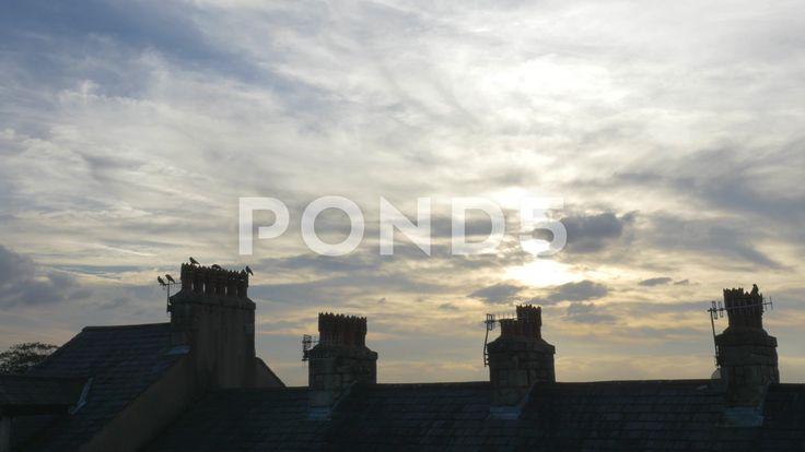 4k Birds Crows On Chimney Roof Sun & Cloudy Sky - Stock Footage   by RyanJonesFilms