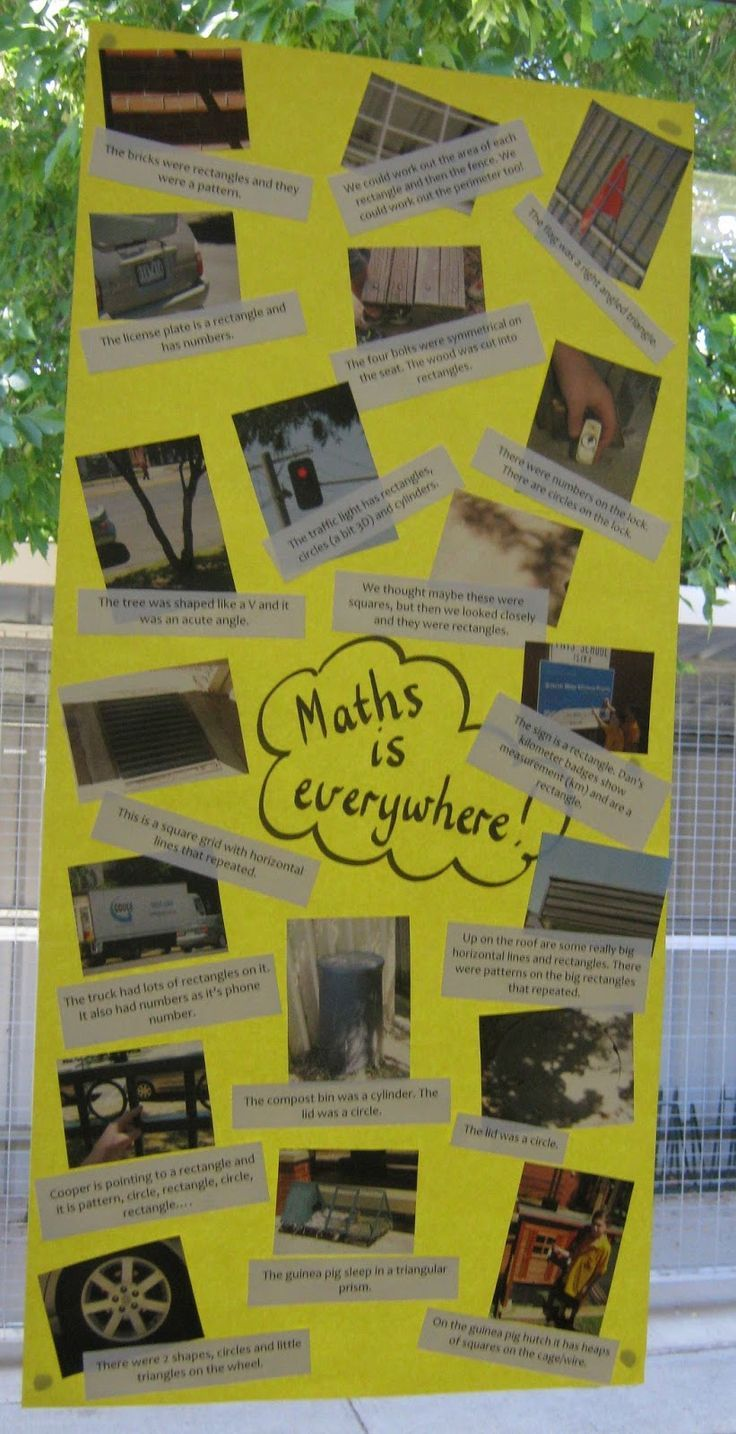 Math in the environment - perfect for real life contexts.