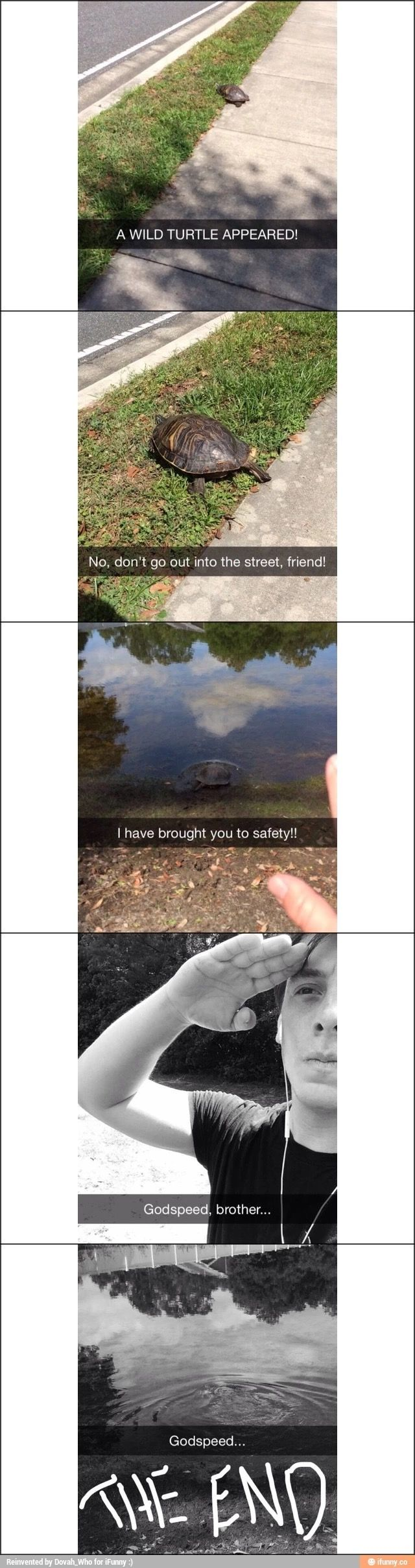 This guy is awesome!!!   *UPDATE* In response to the constant debate in the comments: I don't believe it is a tortoise. All I know is that the little guy went into the water willingly. Thomas did not throw or push it in, from what I can tell.