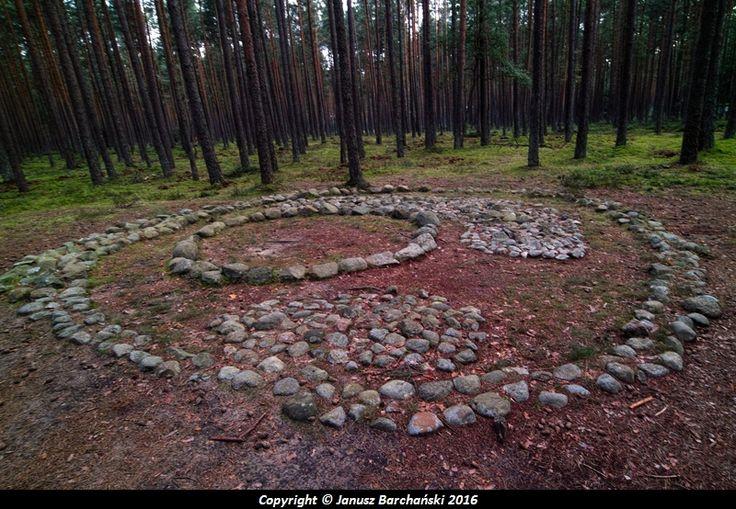 Grzybnica Kamienne kręgi