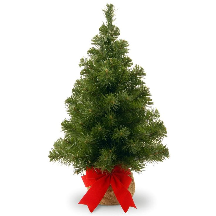 shop online for this dazzling 2 foot noble spruce tree wburlap bag artificial christmas - Buy Christmas Tree Online