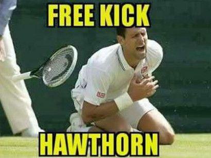 Novak Djokovic thinks he's just won Wimbledon. Free Kick Hawthorn.