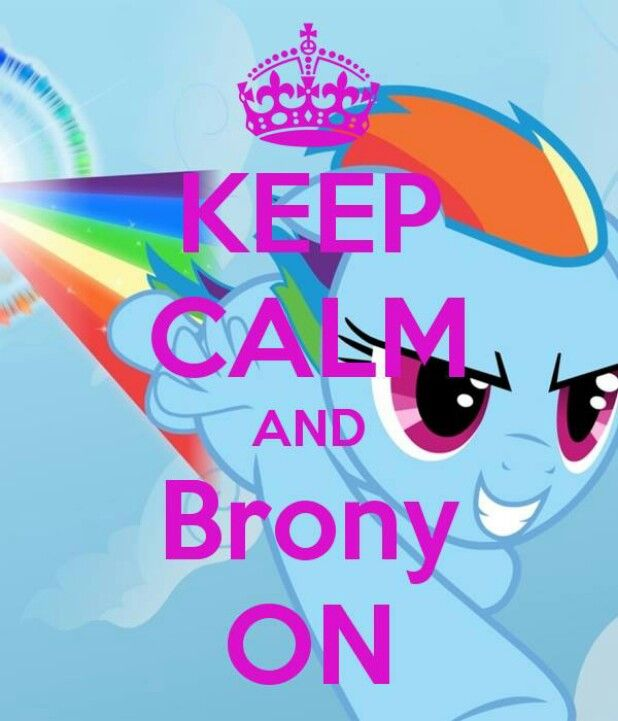 lets go meet the bronies 3 ponies