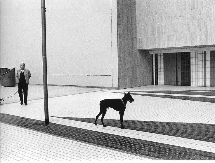 Robert DOISNEAU :: Black Dog / Seine Front, 1978
