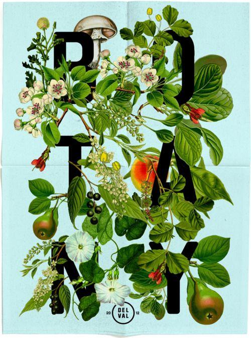 Botany #poster #graphic #typography #logo