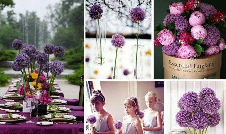 fleurs mariage surprenantes: applications de l'allium
