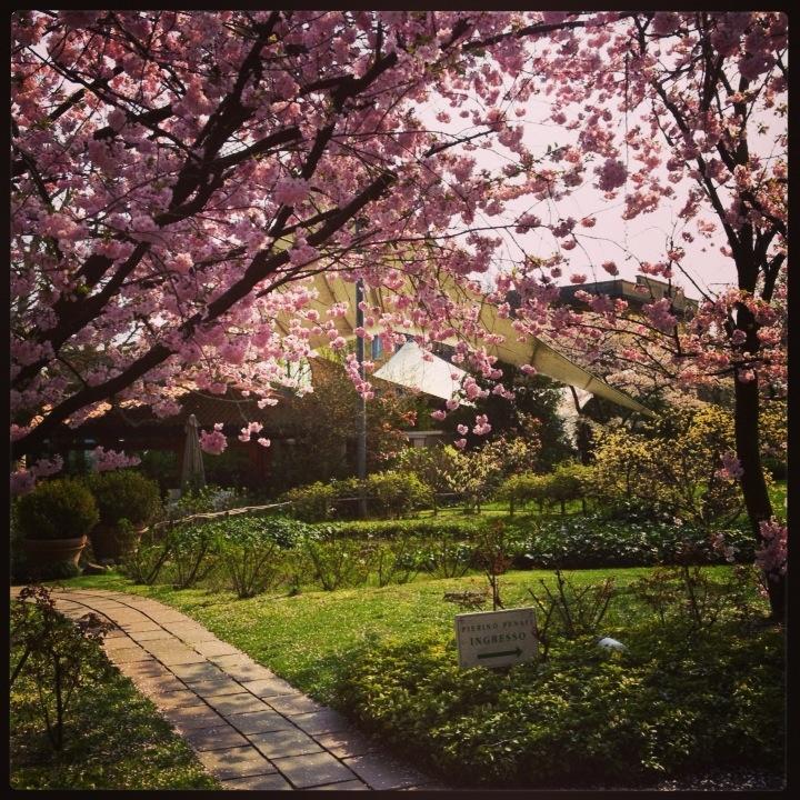 Il giardino in primavera. www.pierinopenati.it