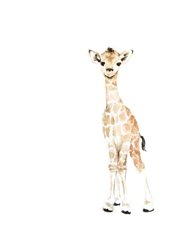 Baby Giraffe Watercolor PRINT