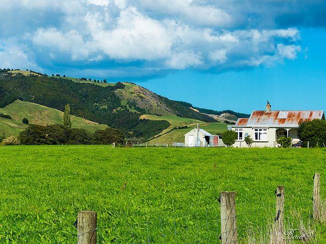 Toko Mouth, Otago New Zealand
