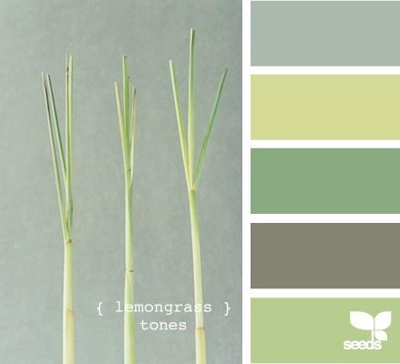 Lemongrass Tones