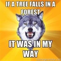 Courage wolf is my sensei