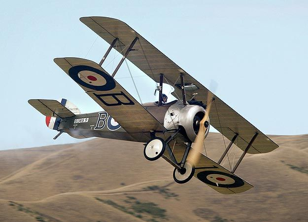 Sopwith Camel. the most important and widely used fighter aircraft during WW I. It has passed into popular culture thanks to Charles Schulz's Peanuts because a recurring fantasy of Snoopy was to challenge the legendary Red Baron piloting a Sopwith Camel :-)