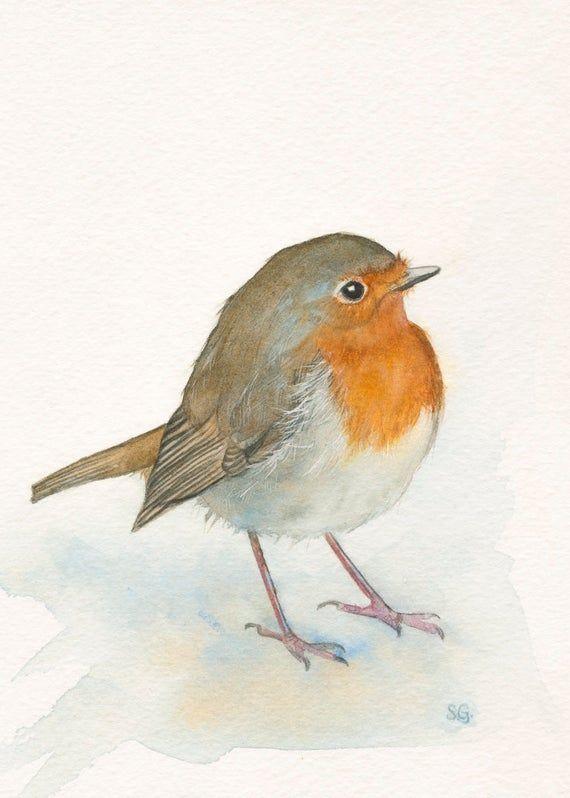 English Robin Print 5x7 Of Watercolor Painting Watercolor