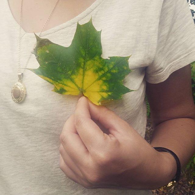 #zielone #green #serce #heart