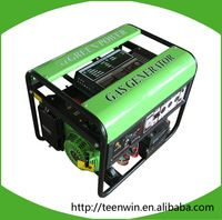 Teenwin biogas generator for sale