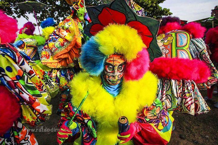 www.rataodiniz.com.br  Turma Da Praça durante o carnaval de Marechal Hermes, subúrbio carioca.  #Turmadapraça #marechalhermes #carnaval2015 #carnaval #batebola #rataodiniz #rj #riodejaneiro #folia #foliao #suburbio #suburbiocarioca #turmadebatebola #cultura #culturapopular #manifestaçaopopular #manifestaçaocultural #cor #cores #mascara http://ameritrustshield.com/ipost/1548996013574825958/?code=BV_I6rbn6fm