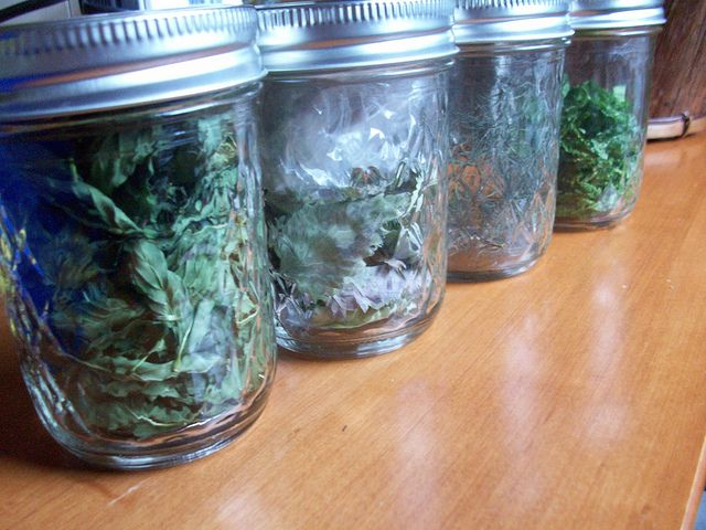 How to dry herbs in the microwave. I am literally going to go do this right now!!