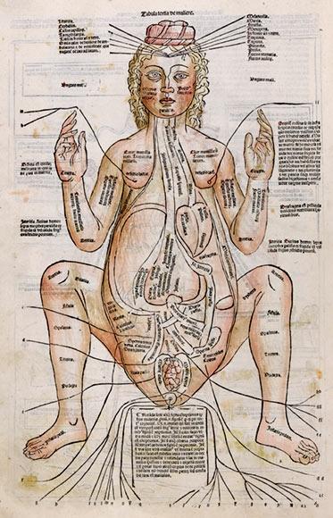 """Femme enceinte"", Johann von Ketham, Fasciculus Medicinae, Venise,1491."