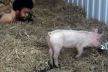 Tongan artist Kalasolaite Uhila and the pig's name is 'colonist'