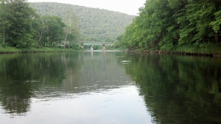 19 best images about roscoe new york on pinterest trout for Roscoe ny fishing