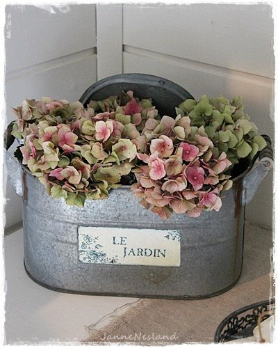 Love the hydrangeas! I ♥ the container too!