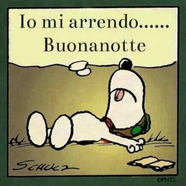 Snoopy, buonanotte