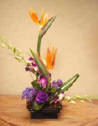 Flower I.D,- Florist
