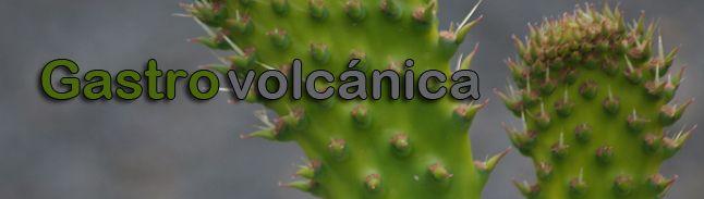Gastrovolcánica = flora silvestre + agricultura ecológica sobre cenizas volcánicas + análisis nutricional + gastronomía