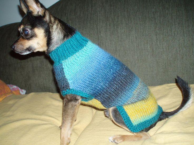 Koiran villapaita liukuvärilangasta