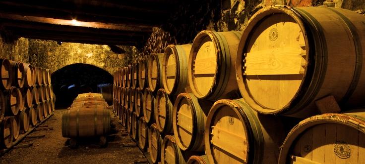 .. hier lagert der ausgezeichnete Wein!