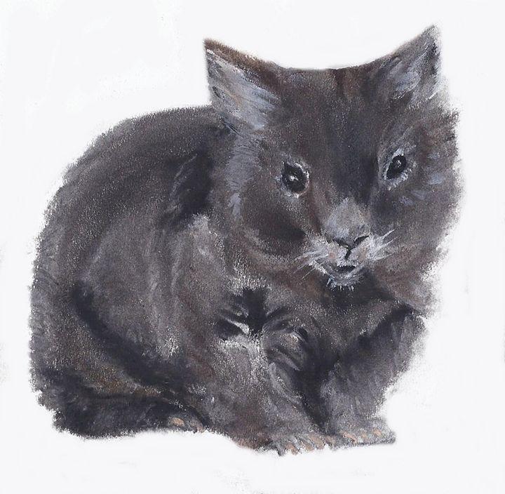 Winter Wombat - Andrea Devos