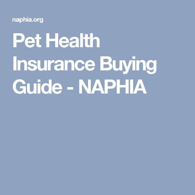 Pet Health Insurance Buying Guide - NAPHIA