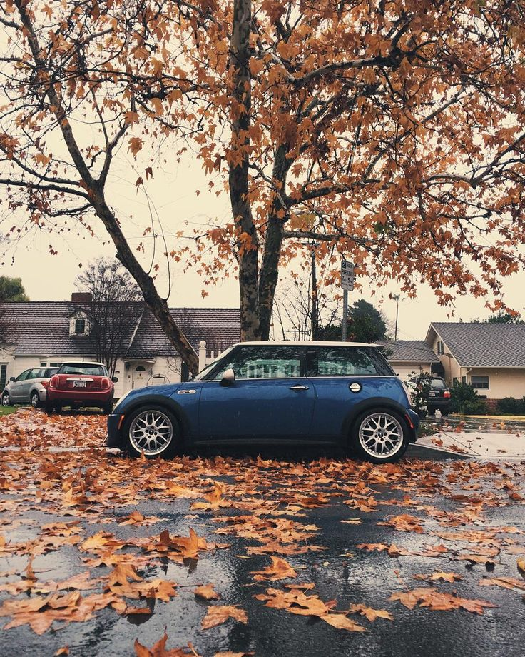 """#r53 you're my boy blue #minicooper #mini #minicoopers #minis"""