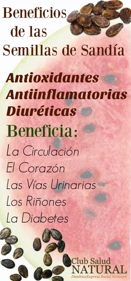 Beneficios de las Semillas de Sandía - Club Salud Natural Las semillas de sandía…