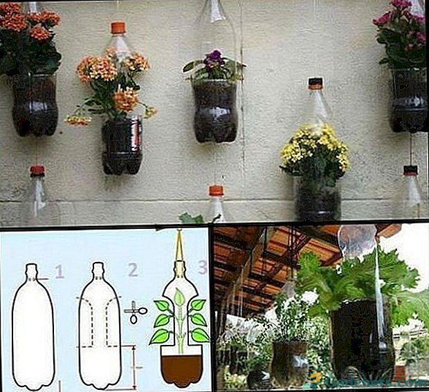 Co Mozna Zrobic Z Plastikowych Butelek Wlasnymi Rekami Na Letni Domek Ogrod I Ogrod Warzywny Diy Hanging Planter Plastic Bottle Planter Plants In Bottles
