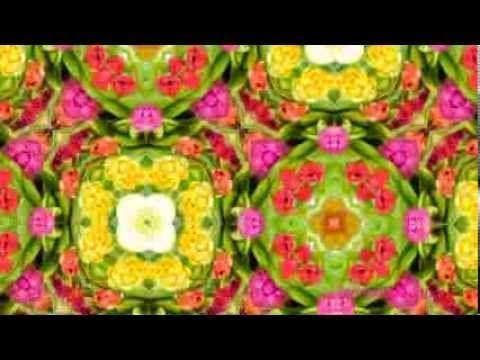 Калейдоскоп цветов